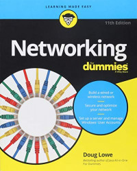 Networking For Dummies (Computer/Tech)