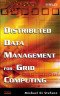 Distributed Data Management in Grid Environments