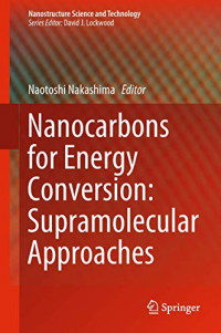 Nanocarbons for Energy Conversion: Supramolecular Approaches (Nanostructure Science and Technology)