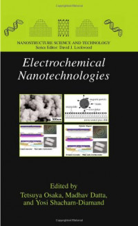 Electrochemical Nanotechnologies (Nanostructure Science and Technology)