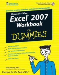 Excel 2007 Workbook For Dummies (Computer/Tech)