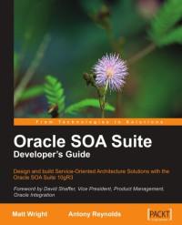 Oracle SOA Suite Developer's Guide
