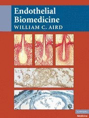 Endothelial Biomedicine