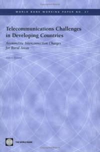 Telecommunications Challenges In Developing Countries: Asymmetric Interconnection Charges For Rural Areas