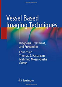 Vessel Based Imaging Techniques: Diagnosis, Treatment, and Prevention