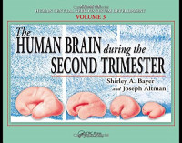 The Human Brain During the Second Trimester (Atlas of Human Central Nervous System Development)