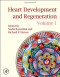 Heart Development and Regeneration (2 Volume Set)