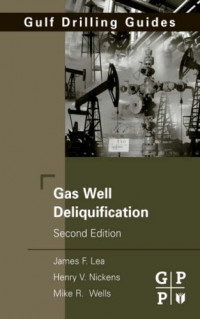 Gas Well Deliquification, Second Edition (Gulf Drilling Guides)