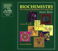 Biochemistry (2 volume set): The Chemical Reactions of Living Cells, Second Edition