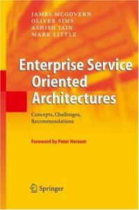 Enterprise Service Oriented Architectures: Concepts, Challenges, Recommendations