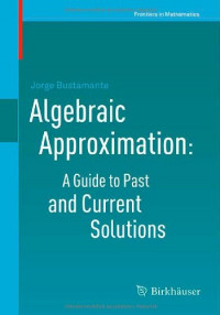 Algebraic Approximation: A Guide to Past and Current Solutions (Frontiers in Mathematics)