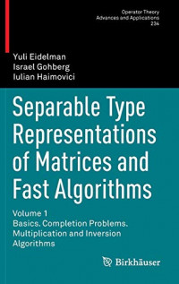 Separable Type Representations of Matrices and Fast Algorithms: Volume 1 Basics. Completion Problems. Multiplication and Inversion Algorithms (Operator Theory: Advances and Applications)