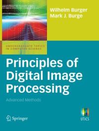 Principles of Digital Image Processing: Advanced Methods (Undergraduate Topics in Computer Science)