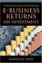 Strategies for Generating E-Business Returns on Investment