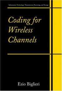 Coding for Wireless Channels (Information Technology: Transmission, Processing and Storage)