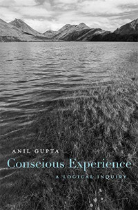 Conscious Experience: A Logical Inquiry