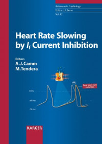 43: Heart Rate Slowing by If Current Inhibition (Advances in Cardiology, Vol. 43)