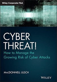 Cyber Threat!: How to Manage the Growing Risk of Cyber Attacks (Wiley Corporate F&A)