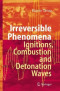 Irreversible Phenomena: Ignitions, Combustion and Detonation Waves