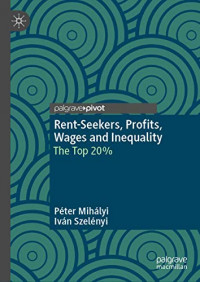 Rent-Seekers, Profits, Wages and Inequality: The Top 20%