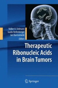 Therapeutic Ribonucleic Acids in Brain Tumors