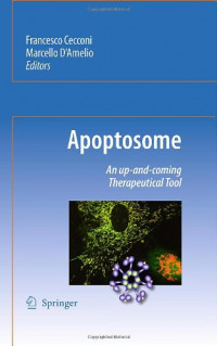 Apoptosome: An up-and-coming therapeutical tool