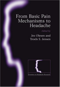 From Basic Pain Mechanisms to Headache (Frontiers in Headache Research)