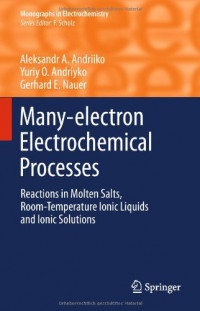 Many-electron Electrochemical Processes: Reactions in Molten Salts, Room-Temperature Ionic Liquids and Ionic Solutions (Monographs in Electrochemistry)