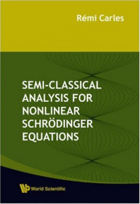Semi-Classical Analysis For Nonlinear Schrodinger Equations