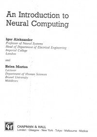 Introduction to Neural Computing
